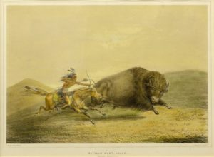 Buffalo Hunt Chase – No.5