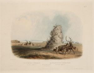 The Elkhorn Pyramid