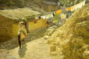 Taxco Horseman
