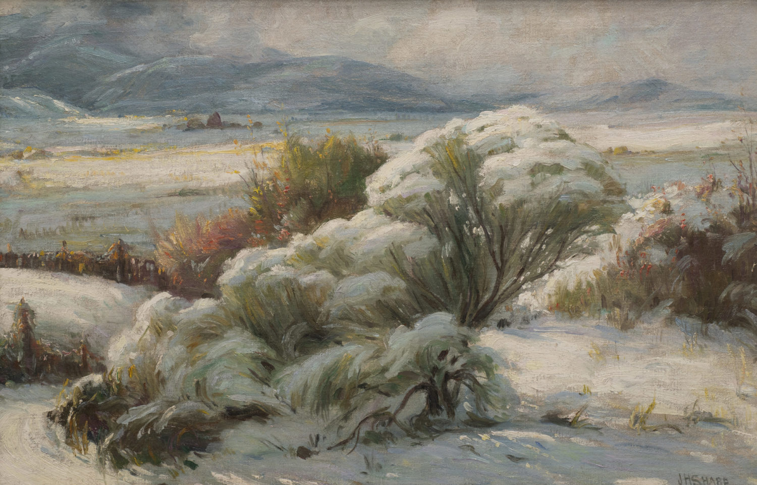 Winter Afternoon – Taos